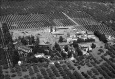 Historic Irvine Ranch