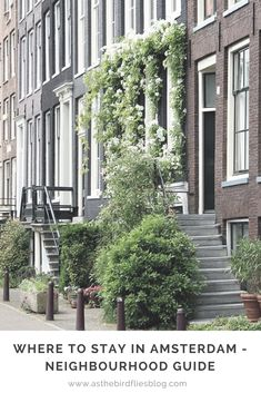 Where to stay in Amsterdam - Neighbourhood Guide #Amsterdam #Netherlands #Hotels #Hotel #Accommodation #Holland #City #Guide #Travel #Tips