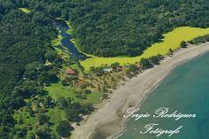 ¿Conoce Tela? Muchos solo conocen la ciudad puerto pero se han perdido de lugares de inmensa belleza como Punta Izopo, lugar rico en biodiversidad y naturaleza exuberante