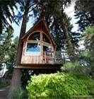 Tree House Cabin Rentals Oregon -