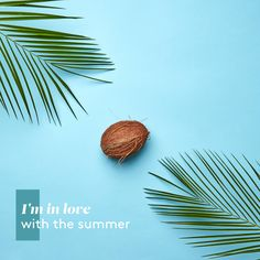 Im In Love, Plant Leaves, Plants, Summer, Plant, Planting, Planets, Summer Time