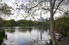 paysage de new york au mois de mai