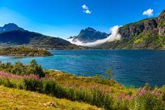 Lofoten - null Lofoten, Mountains, Nature, Travel, Naturaleza, Trips, Traveling, Nature Illustration, Tourism