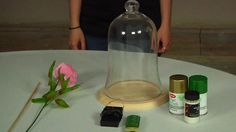 DIY Beauty and the Beast Enchanted Rose on Vimeo