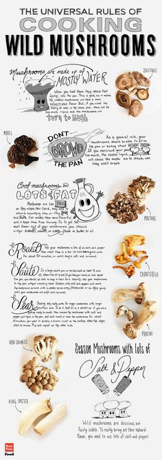 The Ultimate Infographic Of Wild Mushrooms - BuzzFeed