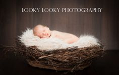 3 Things To Look For Before Choosing a Newborn Photography Sydney Studio