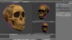 Taung reconstruction by Cicero Moraes - http://arc-team-open-research.blogspot.it/2012/11/taung-project-recovering-missing-parts.html?spref=fb