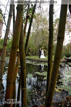 Bridal couple at the lily pond