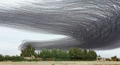A photographer captures the paths that birds make across the sky.