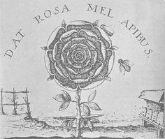 """≗ The Bee's Reverie ≗The Alchemical Rose - Dat Rosa Mel Apibus: """"The rose gives the bees honey"""" after engraving by Johann Thedore deBry, late 1500s"""