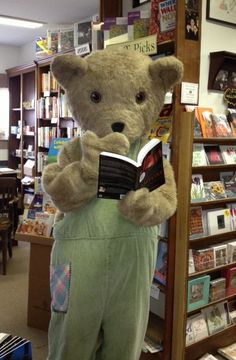 Hanging out between storytimes: Corduroy is a well-read bear. Corduroy Bear, Hanging Out, Owl, Teddy Bear, Author, Events, Places, Animals, Animales