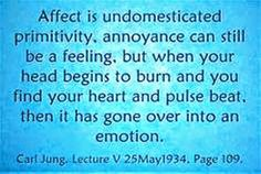 """Carl Jung Depth Psychology: Carl Jung on """"Affect"""" Lexicon"""