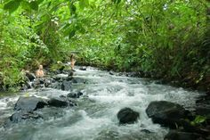 Costa Rica... Black sand beaches, abundant wildlife, idyllic weather. When it comes to tropical summer getaways, Costa Rica is an obvious choice. But don't let the travel guides fool you. You can get a quality vacation on a backpacker's budget.
