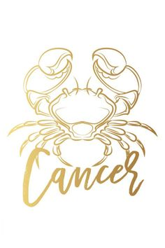Zodiac Art, My Zodiac Sign, Scorpio Constellation Tattoos, Tarot, Cancer Tattoos, Astrology Signs, Ideas, Zodiac Cancer, Mugs