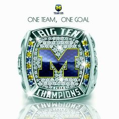 Hail Yes!!! Football Presents, U Of M Football, Michigan Wolverines Football, College Football, Colleges In Michigan, University Of Michigan, Michigan Go Blue, Detroit Sports, Athletic Events