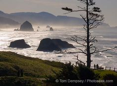 Cannon Beach, Oregon. One of my favorite places ever.