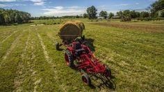 A agricultura e a construção, que utilizam máquinas em suas atividades, são dois dos principais pilares para o futuro econômico da ilha