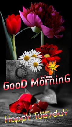 Tuesday Quotes Good Morning, Good Morning Happy, Good Morning Beautiful Images, Poster, Billboard