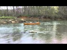 Smart dog rescues dogs in canoe.