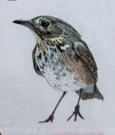 A Bird for Mr. B