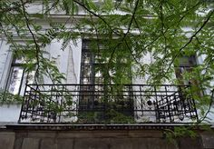 Pölcz Klaudia - kisklau: A Lenck-villa kertje