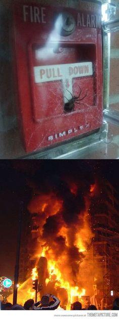 Just let it burn…