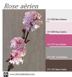 Cette palette de couleurs est à la fois légère et stimulante. Le #Rose Stellaire apporte la touche de gaieté et le #Marron Sarthe comme le #Gris Bratislava la note intemporelle. www.chromaticstore.com