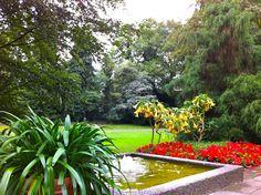 Der Kurpark verbindet das Kurviertel mit der Altstadt und ist Ausgangspunkt für schöne Spaziergänge, beispielsweise zum nahen Kloster Medingen. Bad Bevensen, Hotel Berlin, Sidewalk, Plants, Old Town, Nice Asses, Sidewalks, Plant, Pavement