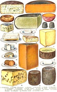 Cheese.  From: 1907  Mrs. Beeton's Book of Household Management.  via Google Books  (PD-150)      suzilove.com
