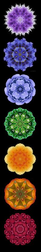 Mind Body Spirit, the Chakra System ;  I just like the colors!