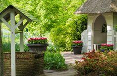 Archi Design, Outdoor Structures, Exterior, Patio, Outdoor Decor, Plants, Gardens, Home, Outdoor Gardens