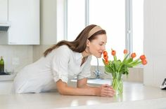 Remédios caseiros para o mau cheiro na casa