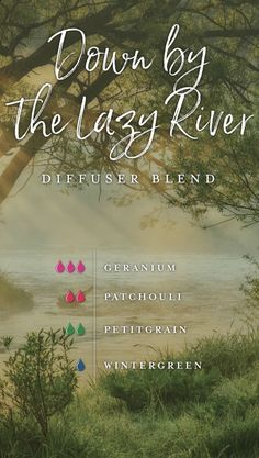 fall essential oil diffuser blends young living homemade essential oil blend for sleep Young Living Diffuser, Young Living Oils, Young Living Essential Oils, Essential Oil Diffuser Blends, Essential Oil Uses, Oils For Energy, Cedarwood Oil, Blog, Diffuser Recipes