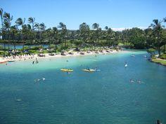 Hilton Waikoloa Village, Big Island, Hawaii. It is spectacular...