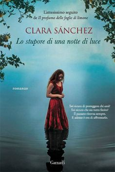 Clara Sánchez, Lo stupore di una notte di luce