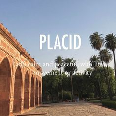 Placid |ˈplasəd| early 17th century origin from French placide, from Latin placidus, from placere 'to please.' . . #beautifulwords #wordoftheday #placid #humayunstomb #delhi #india #