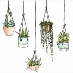Illustrated Hanging Plants Window Clings & Wall Stickers