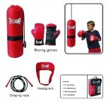 Deluxe Boxing Set $39.00