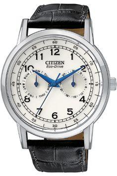 Citizen Gents Vintage Strap Stainless Steel Case Watch AO9000-06B | the Watch Hut
