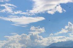 Die Raumfee: Freiheitshimmel in den Schweizer Alpen