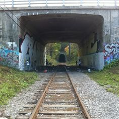 The Montreal-based graffiti crew, Crazy Apes recently took a trip out to Quebec City. Here are some of the photos from their trip. America And Canada, North America, Quebec City, Railroad Tracks, Graffiti, Lost, Quebec, Graffiti Artwork, Train Tracks