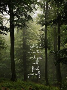 Get lost in nature and you will find yourself.. WILD WOMAN SISTERHOODॐ #WildWomanSisterhood #nature #gratitude #wildwomanteachings #theuniversewithin #wildwomanpostcards #gratitudeistheattitude #wildwomanmedicine #rewild #yoga #yogamind #repinned #earthenspirit #touchtheearth #holyplace #brewyourmedicine #gaia #earth #wildtemple
