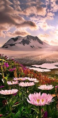 ✿≠✿≠✿ Landscape ✿≠✿≠✿ this is what heaven might look like!
