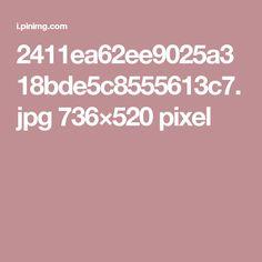 2411ea62ee9025a318bde5c8555613c7.jpg 736×520 pixel