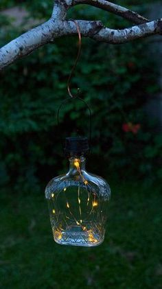 Afterglow Solar Bottle Lantern Kit (Set of – Decorating Foyer Solar Light Crafts, Solar Lights, Backyard Trees, Backyard Landscaping, Landscaping Ideas, Florida Landscaping, Backyard Lighting, Outdoor Lighting, Lighting Ideas