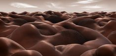 Landscapes of human bodies by Carl Warner