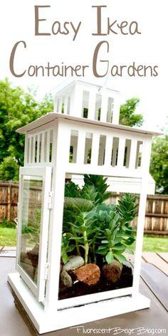 Easy Ikea Container Terrarium  that doubles as an outdoor centerpiece