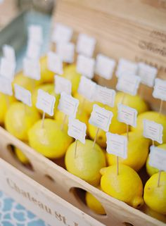 Escort cards sprouted out of fresh lemons displayed in a rustic wine crate.