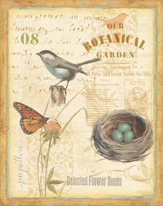 Mon Jardin II Prints by Lisa Audit at AllPosters.com