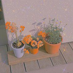 Orange Glitter, Sparkles, Planter Pots, Aesthetics, Bling, Yellow, Flowers, Jewel, Royal Icing Flowers